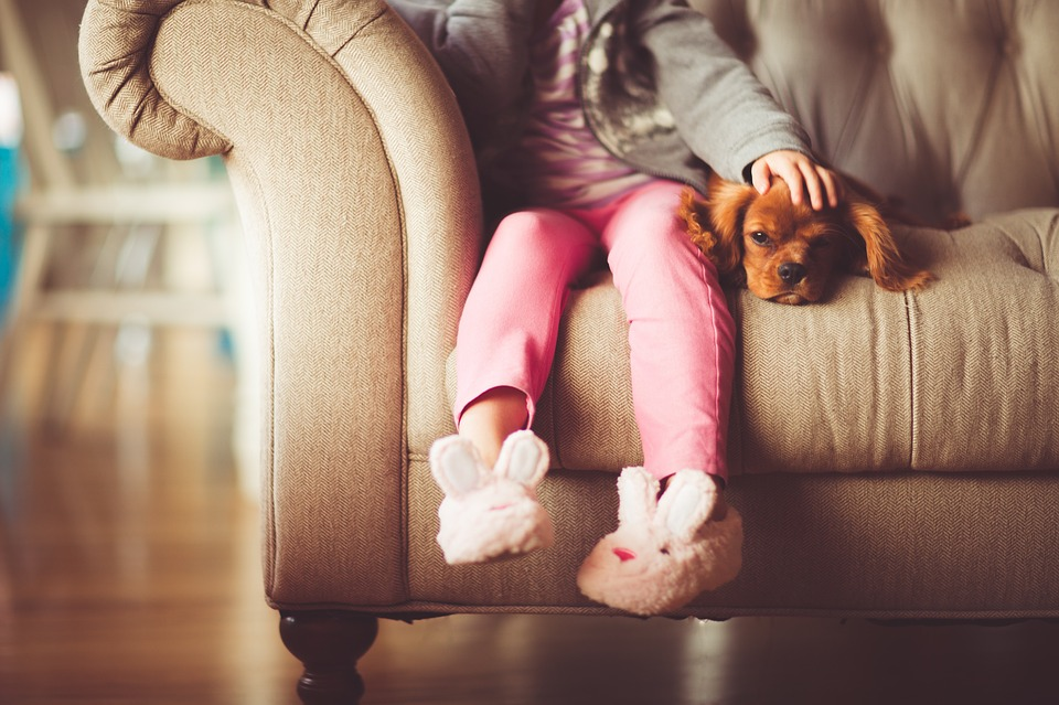 Zvieratká sú výbornou voľbou pre terapiu.